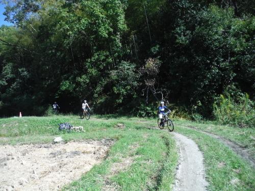 山の辺の道 MTBサイクリング_b0332867_23523487.jpg