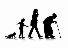 足腰鍛えて健康寿命は自分の努力で伸ばそう_b0179402_12044281.jpg