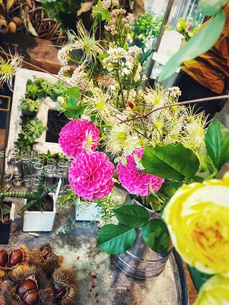 today\'s flower_d0321904_14403348.jpg