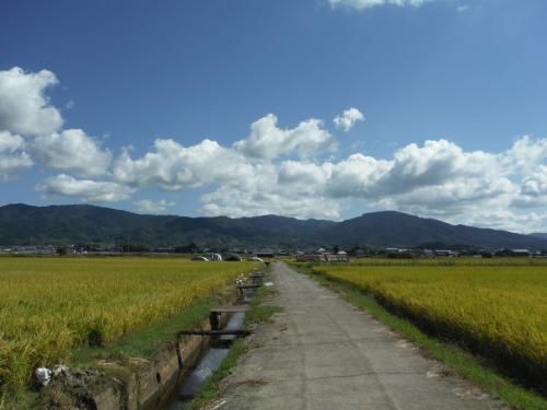 山の辺の道 MTBサイクリング_b0332867_00011922.jpg