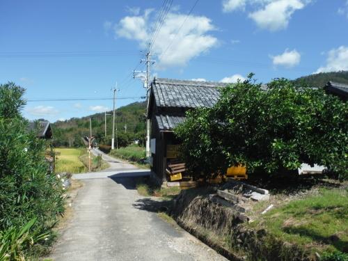 山の辺の道 MTBサイクリング_b0332867_00063808.jpg