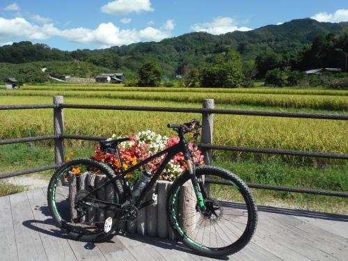 山の辺の道 MTBサイクリング_b0332867_00083434.jpg