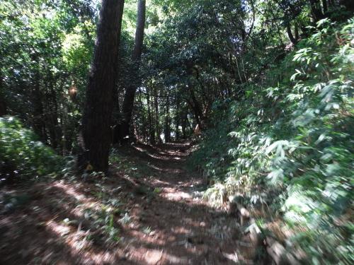 山の辺の道 MTBサイクリング_b0332867_00203076.jpg