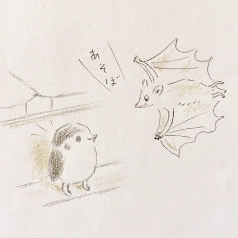 ノグチクミコ絵本原画展「ほんとうの空の下で」と同時開催「すずめのにわのそらちゃん」のお知らせ_f0296936_19162052.jpg