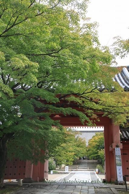 京都 真如堂 真正極楽寺 初紅葉_f0374092_15145780.jpg
