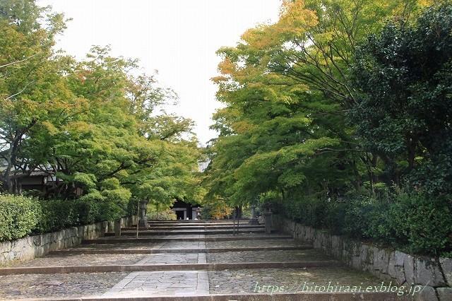 京都 真如堂 真正極楽寺 初紅葉_f0374092_15453900.jpg