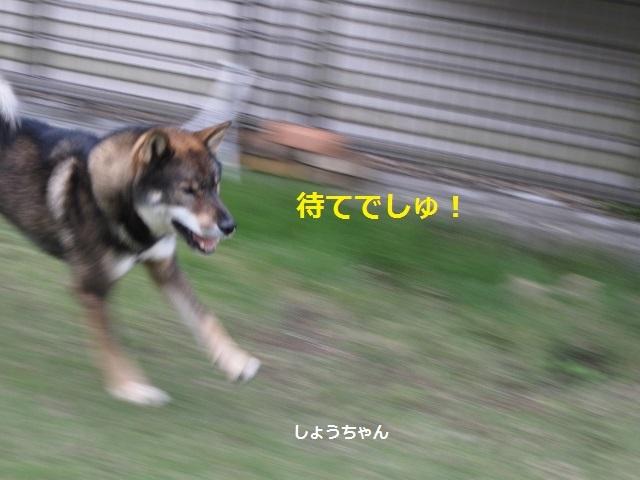 f0143123_09475027.jpg