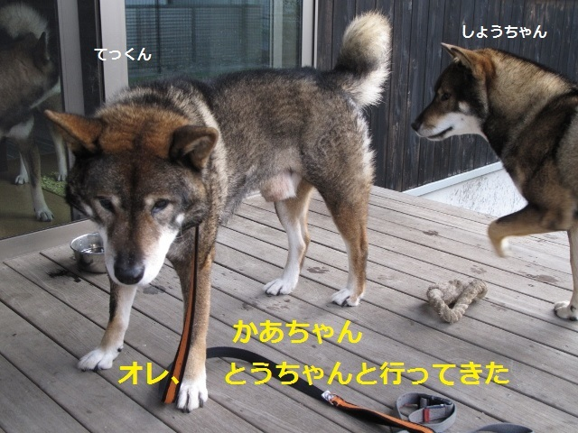 f0143123_10002014.jpg
