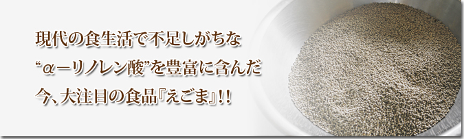平成30年産『白エゴマ』の収穫の様子(前編:エゴマの栽培は収穫とその後の作業が大変なんです!)_a0254656_18542775.jpg