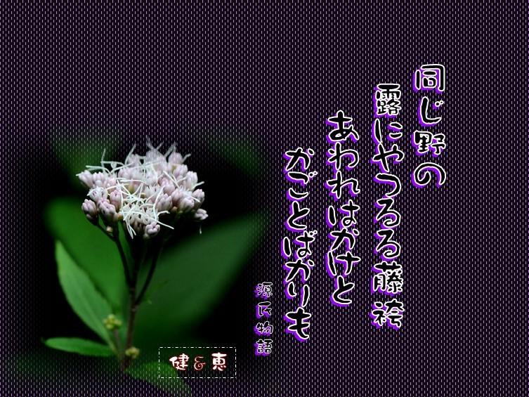 f0214467_11044153.jpg