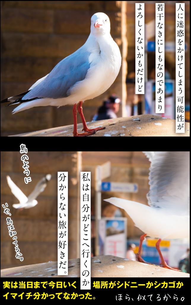 a0358016_16145802.jpg