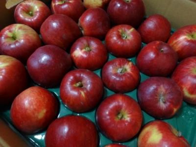 いつもの紅玉リンゴが届いた♪_c0330749_17191358.jpg