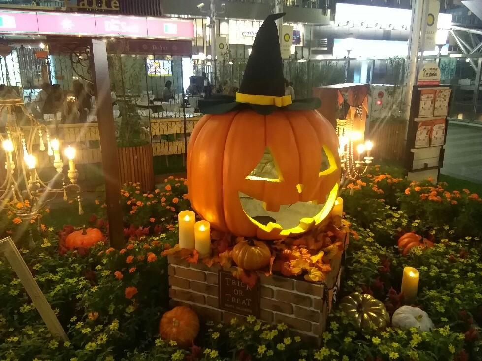 花やハロウィンの装飾がいっぱいの大阪駅でエレクトーン奏者によるエキコン~♪_a0004752_23204676.jpg