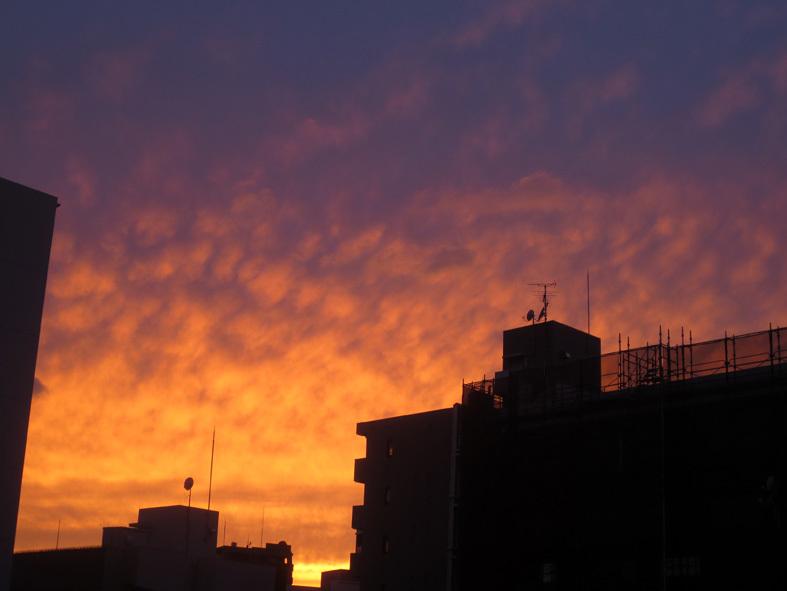 ■暮れ落ちる秋の日――週替わりの夕暮れ[10/11]_d0190217_22263192.jpg