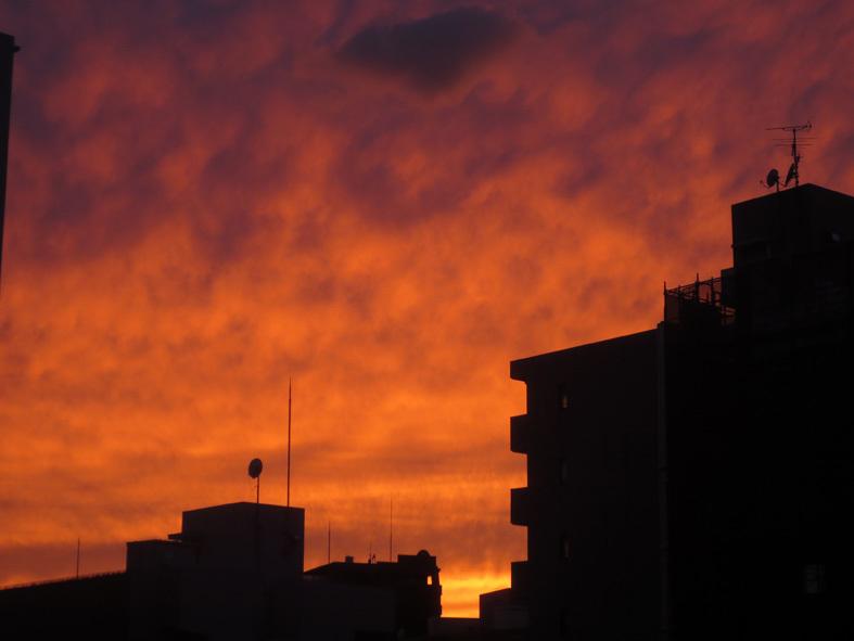 ■暮れ落ちる秋の日――週替わりの夕暮れ[10/11]_d0190217_22265337.jpg