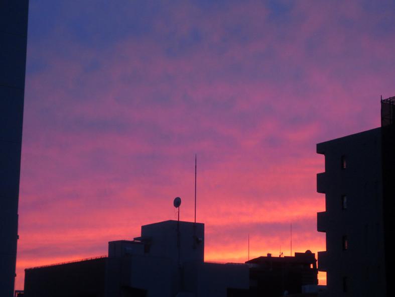 ■暮れ落ちる秋の日――週替わりの夕暮れ[10/11]_d0190217_22271147.jpg