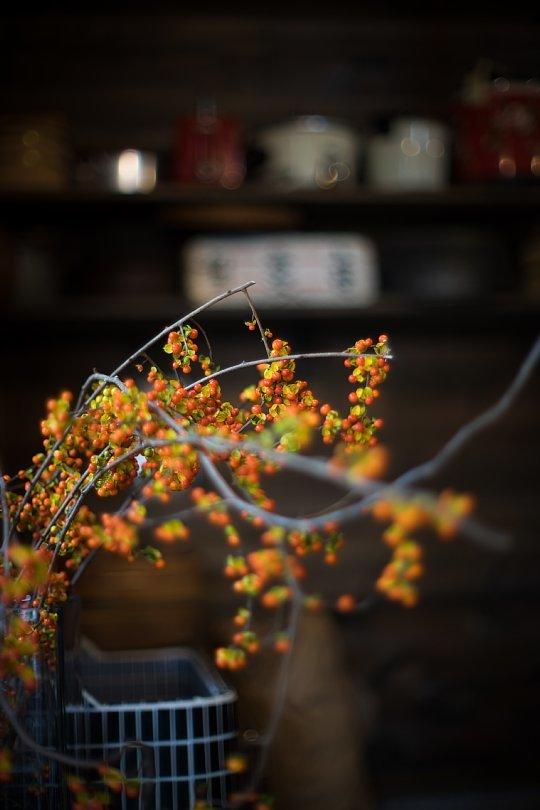 """Nostalgic Light In Rustic Japanese \""""SOBA\"""" Restaurant_d0353489_14050308.jpg"""