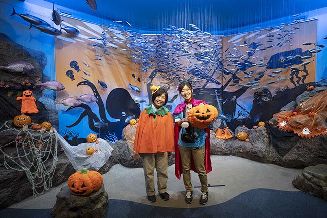 新江ノ島水族館のハロウィン②_b0145398_23414938.jpg