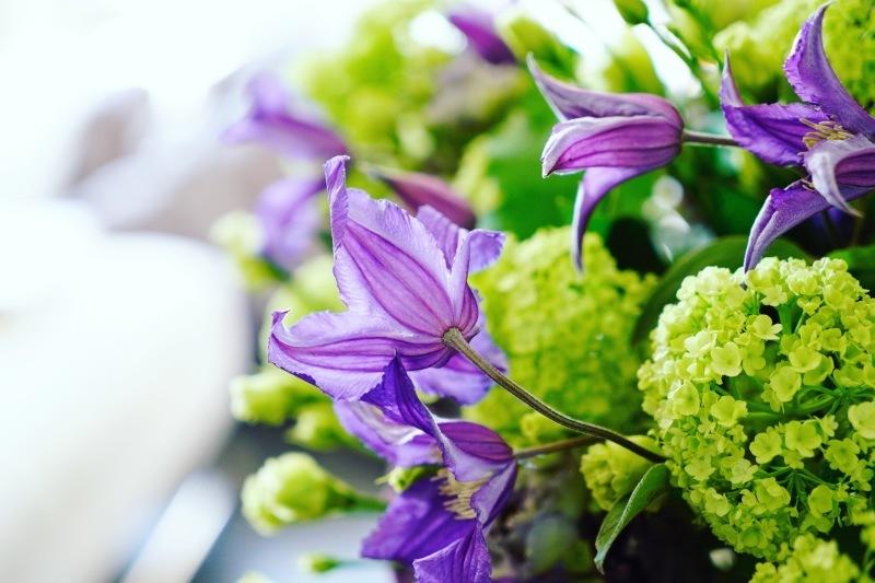 お花の定期便_d0355818_06022145.jpeg