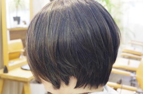 ハイライトと白髪ぼかし_d0224931_19124021.jpg