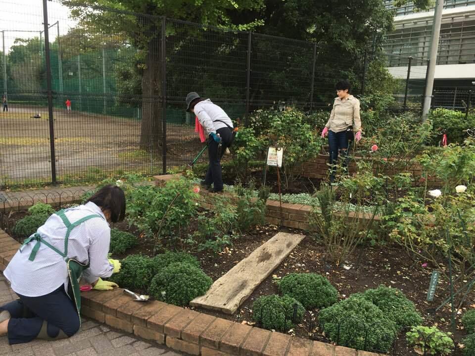 2018年10月月例会「バラの周辺整備 野ばら、植栽 草花整理」_a0094959_01231422.jpg