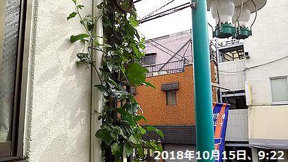 d0051601_20225538.jpg