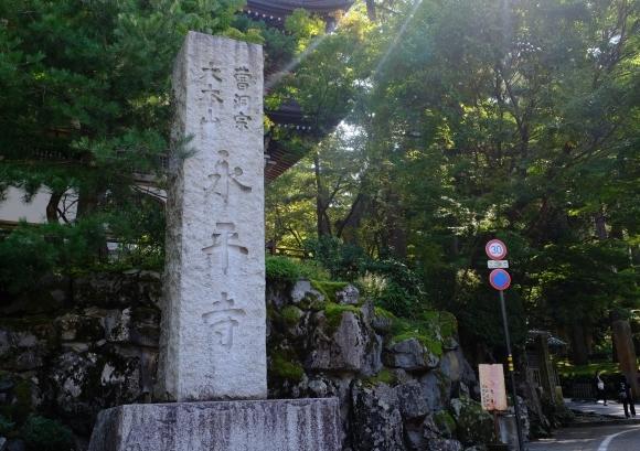 福井の旅_e0000910_12470419.jpg
