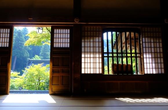 福井の旅_e0000910_16335287.jpg