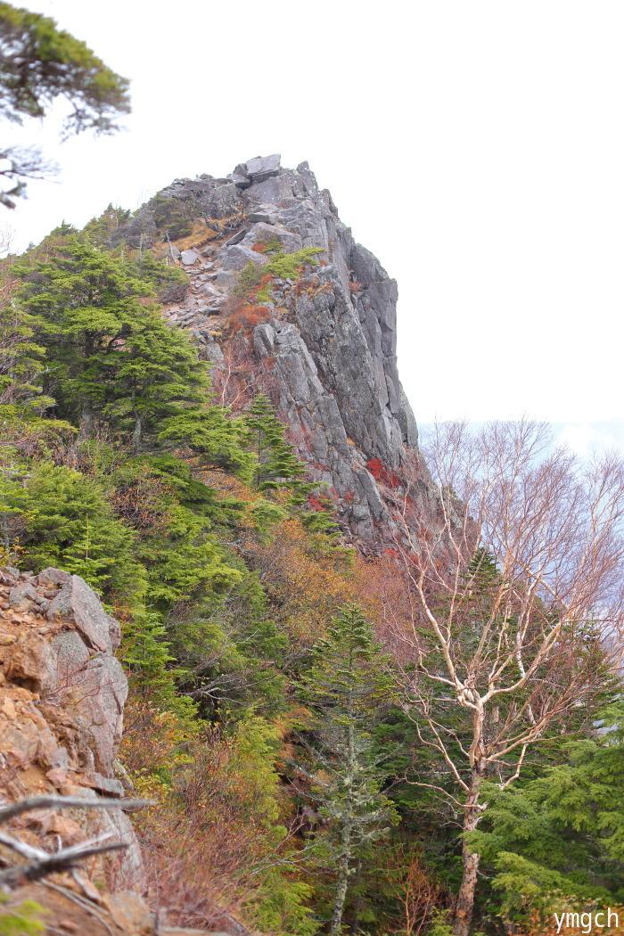 晩秋の白駒池周遊(2)_f0157812_16031510.jpg