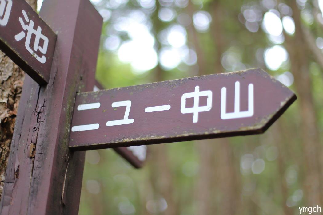 晩秋の白駒池周遊(2)_f0157812_16034781.jpg