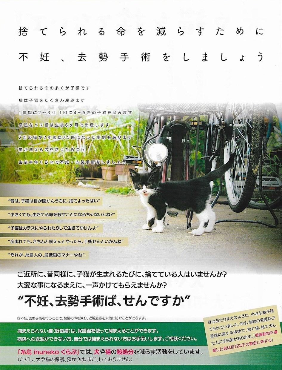 糸島の人、 犬や猫を捨てないで。_d0073743_20554490.jpeg