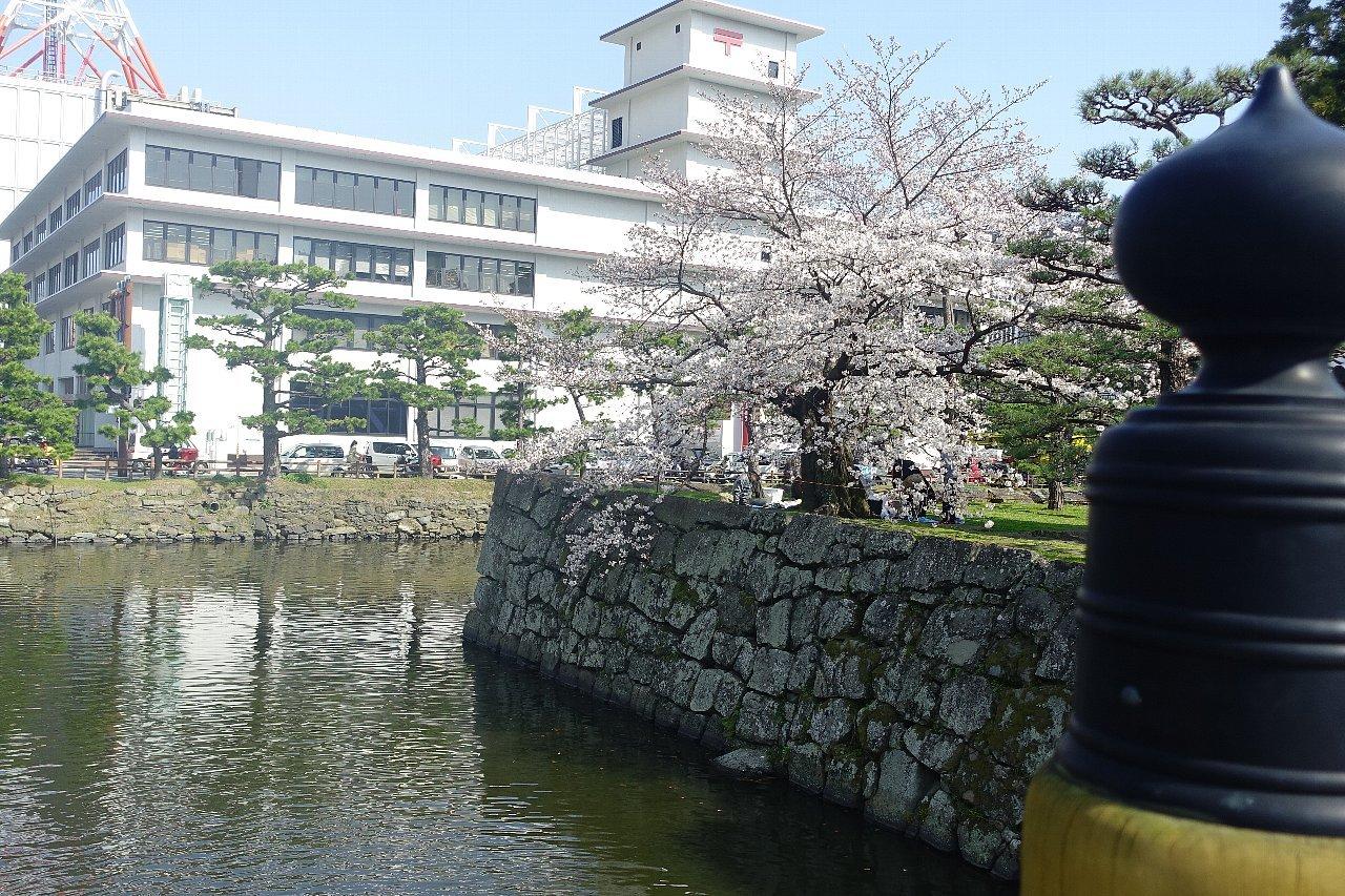 和歌山中央郵便局_c0112559_08115017.jpg