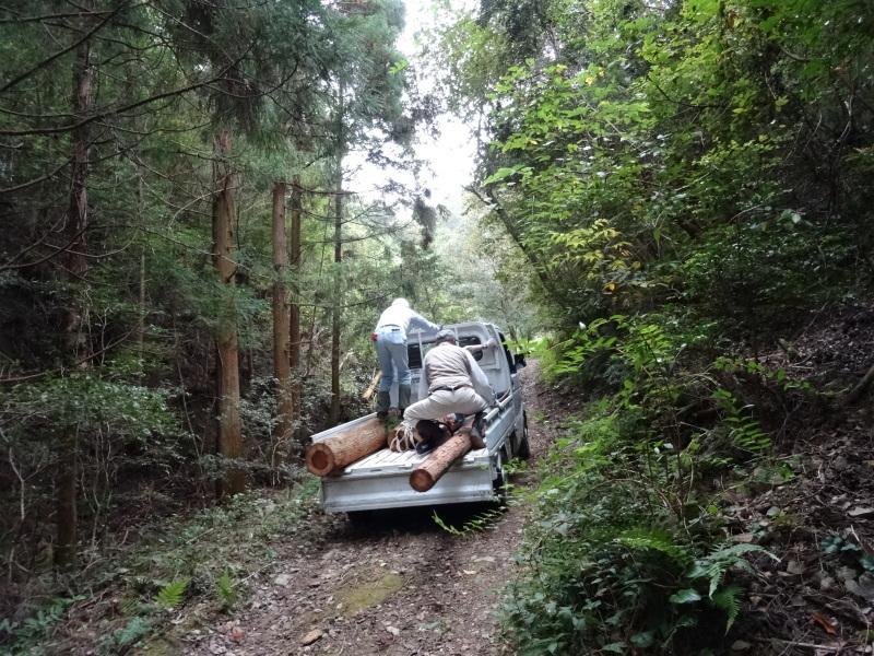 倒木の搬送・杉皮剥き・・・孝子の森_c0108460_18174426.jpg