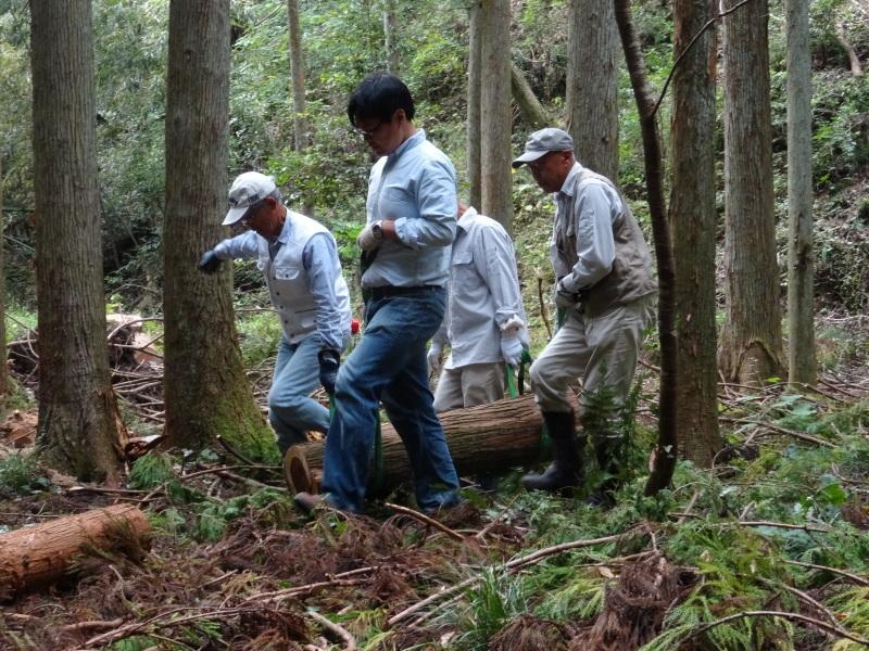 倒木の搬送・杉皮剥き・・・孝子の森_c0108460_18210379.jpg