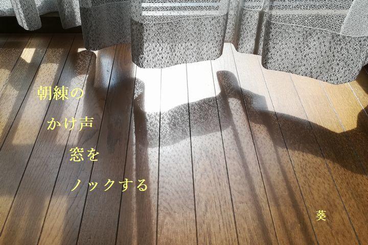 f0379160_15592304.jpg