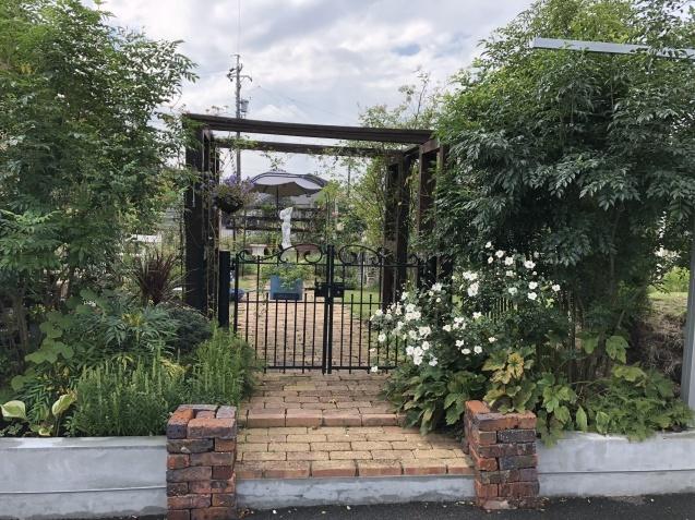 10月の庭「庭入り口の白色秋明菊が見頃になりました」_a0243064_18411805.jpg