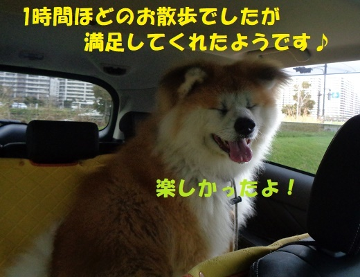 f0121712_00024139.jpg