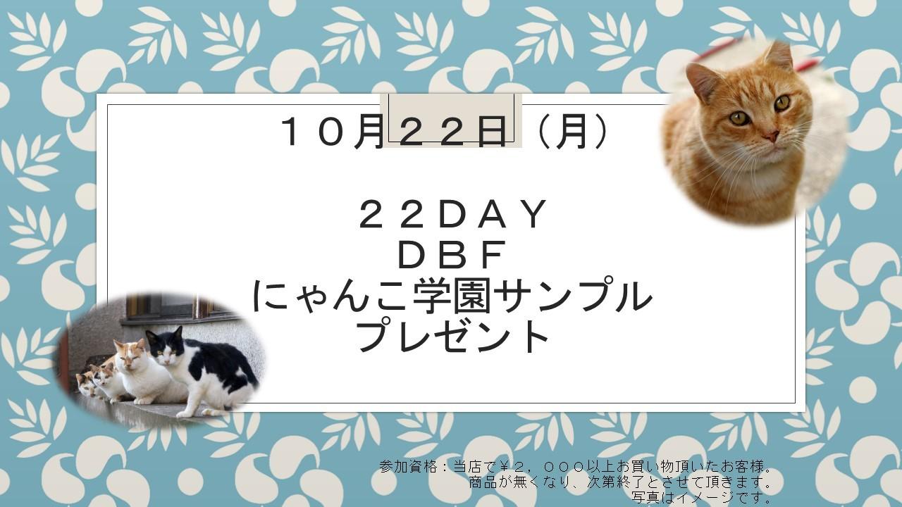 181017 22DAYイベント告知_e0181866_10282491.jpg