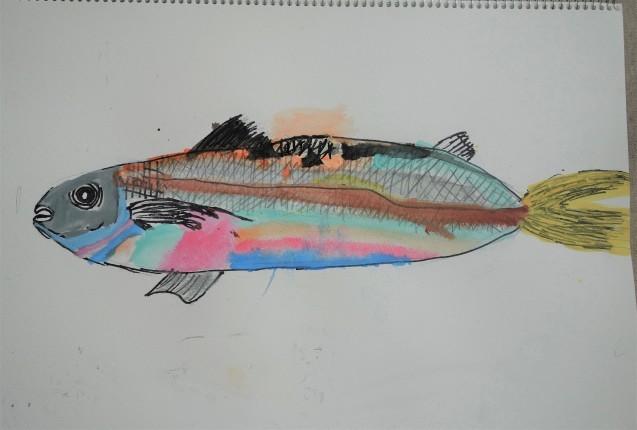 魚(アジ)の写生_e0317274_08451306.jpg