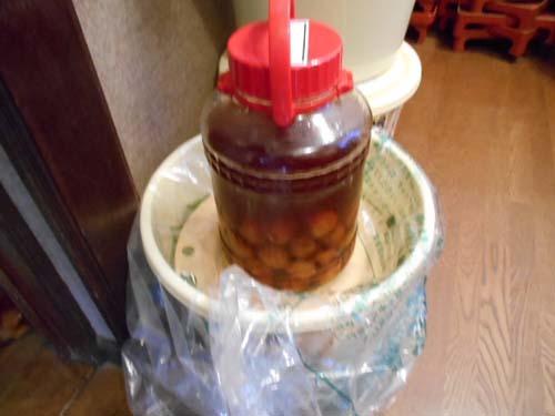 ぶり大根&山形青菜(せいさい)漬けの季節_f0019498_17205661.jpg