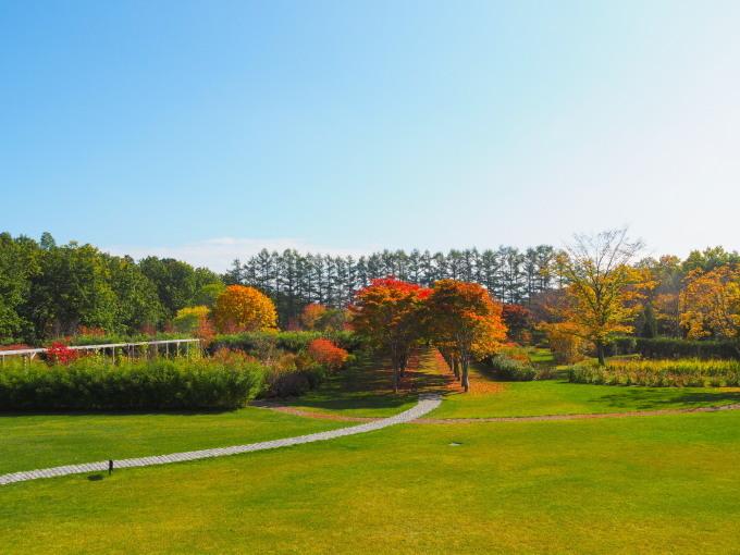 秋深まった美術村庭園と新札内丘陵からポロシリ岳_f0276498_22355179.jpg