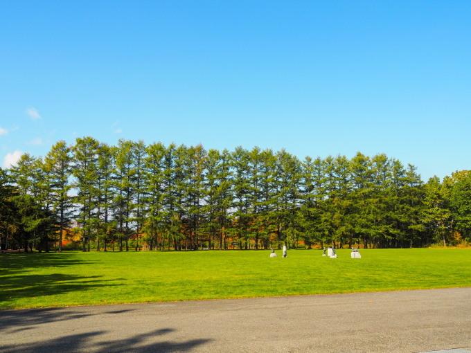 秋深まった美術村庭園と新札内丘陵からポロシリ岳_f0276498_22374949.jpg
