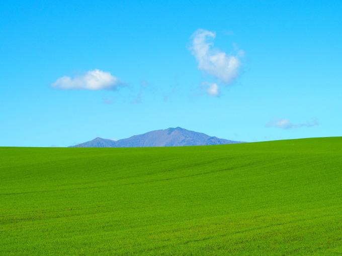 秋深まった美術村庭園と新札内丘陵からポロシリ岳_f0276498_22590827.jpg