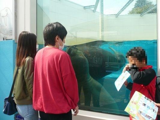 10/17 鳥羽水族館_a0154110_10255394.jpg