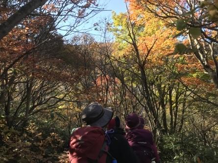 紅葉シーズンの那須岳へ_f0101226_23213028.jpeg