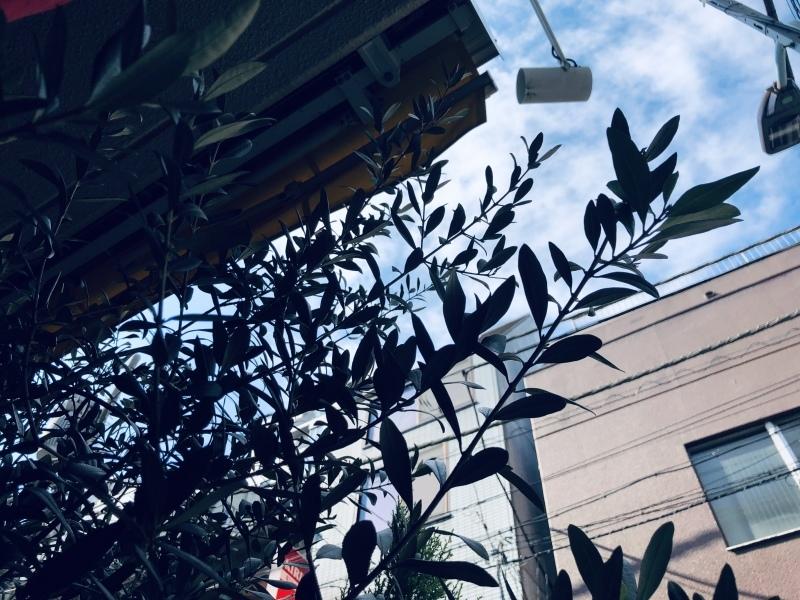 あの日も空は青かった、はず。&10月19日(金)のランチメニュー_d0243849_14342971.jpeg