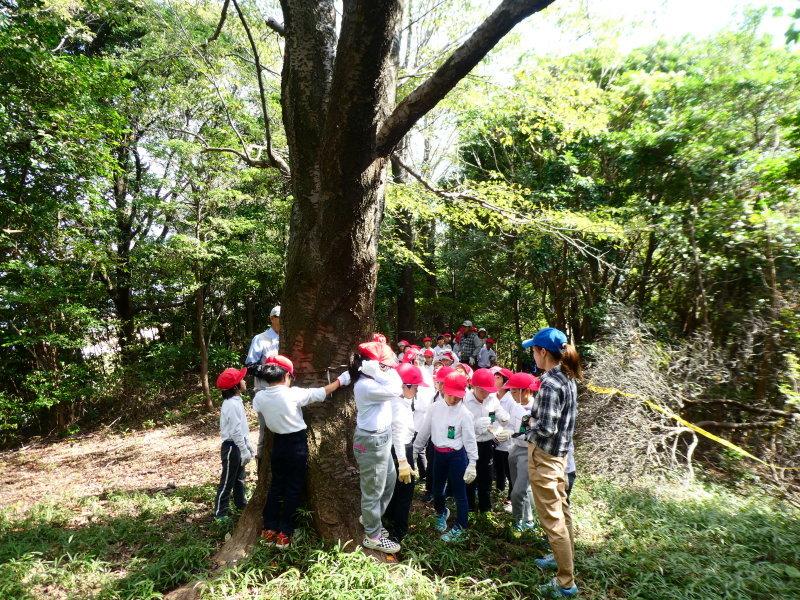 鳴滝小学校2年生遠足のサポート・・・うみべの森_c0108460_17170737.jpg