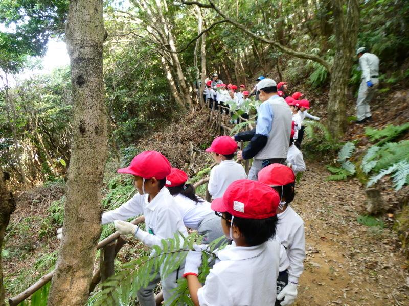 鳴滝小学校2年生遠足のサポート・・・うみべの森_c0108460_17175642.jpg
