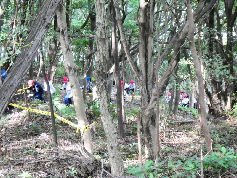 鳴滝小学校2年生遠足のサポート・・・うみべの森_c0108460_17190590.jpg