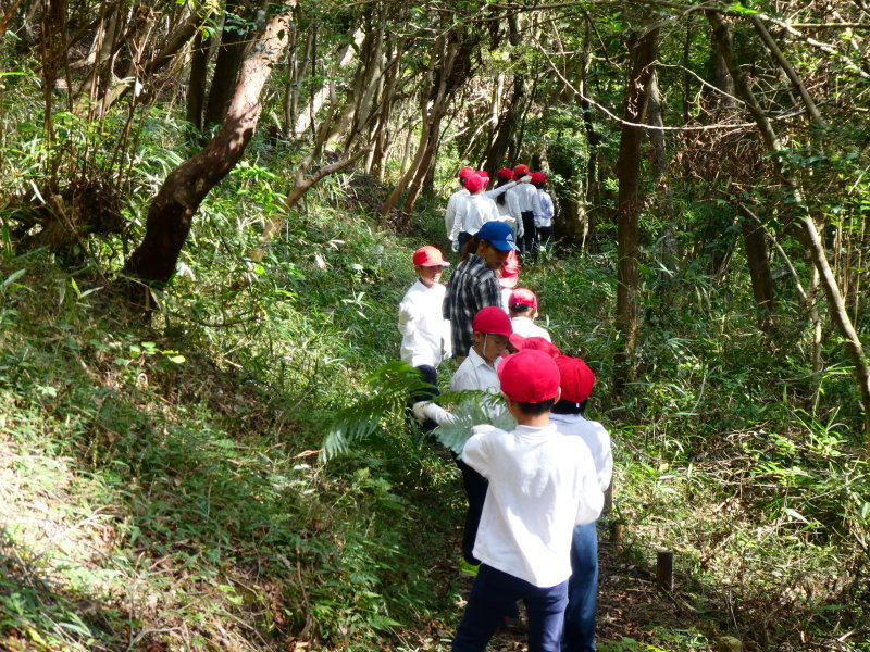 鳴滝小学校2年生遠足のサポート・・・うみべの森_c0108460_17194917.jpg